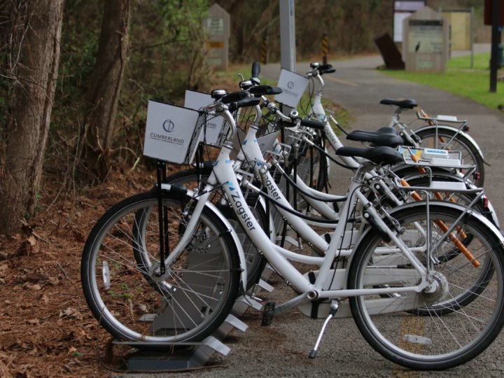 Multimodal Transportation is Key to Continual Growth in Cumberland CID